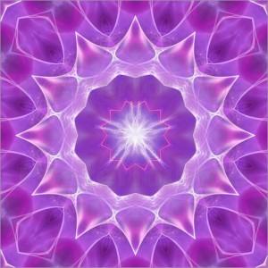 dolphins-dreamdesign-violet-flame-24589