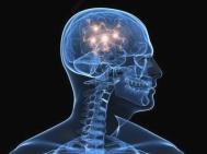 cervello-ottimismo